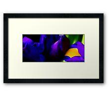 Emperor Purple Framed Print