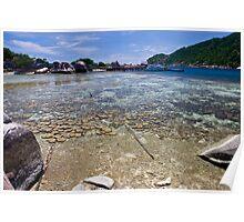 Corals of Koh nangyuan Poster