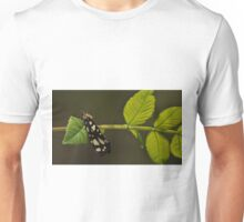 Black and White Bug on a Leaf T-Shirt