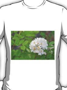 White Flower and a Bee T-Shirt