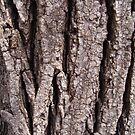 Tree-ish by Marmadas