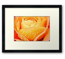 Sunshine and Showers Framed Print