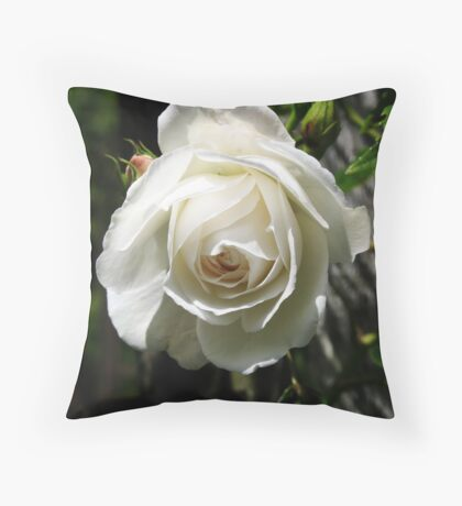 Virginal - pure, new, untouched Throw Pillow