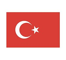 Flag of Turkey, Turkish Flag, Pure & Simple by TOM HILL - Designer