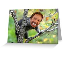 The Majestic Chuckroon Greeting Card