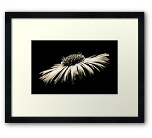 Depth of Purity Framed Print