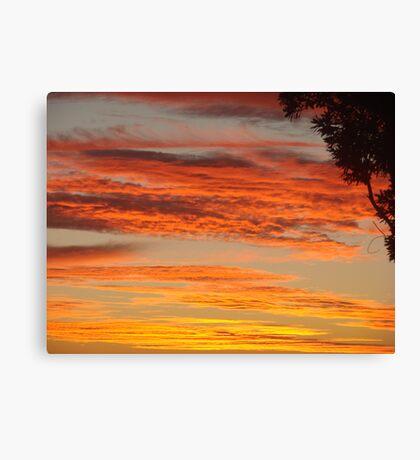 Firey Cane Colouds Canvas Print