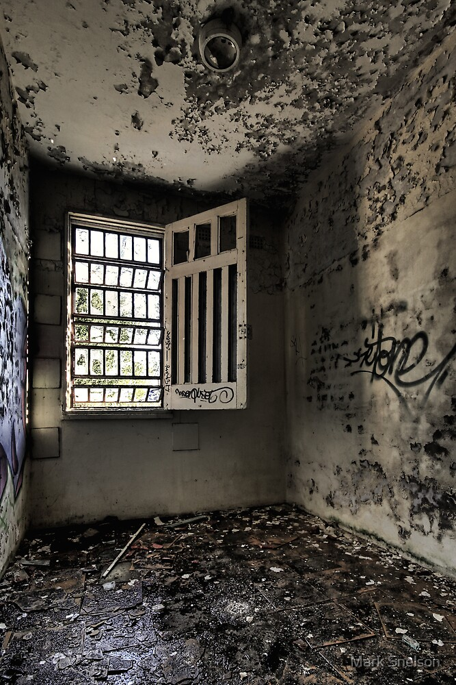 If Walls Could Talk by Mark Snelson
