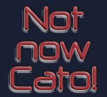 Not now Cato! Cato Fong is Clouseau's Chinese manservant, Pink Panther by TOM HILL - Designer