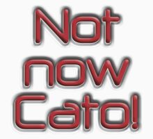 Not now Cato! Cato Fong is Clouseau's Chinese manservant, Pink Panther Kids Clothes