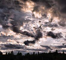 Thunder Clouds by Teresa Zieba