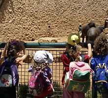 Children in the zoo by Moshe Cohen