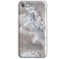 Winter Sculpture iPhone Case/Skin