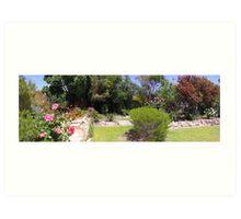 Our back garden Art Print