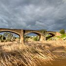 Water under the Bridge by Dave  Hartley