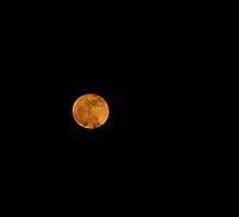 Full Moon.  by Cheyenne