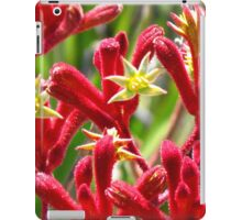Red Kangaroo Paw iPad Case/Skin
