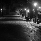 Road to Cathedral by bluecoomassie