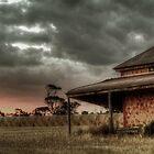 Harvest sun set by Dave  Hartley