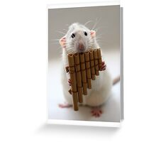 Playing the panflute. Greeting Card