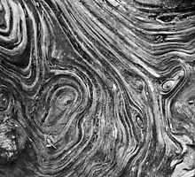 Driftwood Grain Maze by Bart Hickman