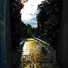 Sacred Path by Luis Correia