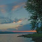 Sunset On Owasco by joan warburton