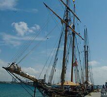 19th Century Sailing Ship by gharris
