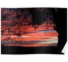 Late June Sunset Poster
