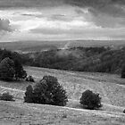 Landscape around Libverda Spa, Czech Republic by Lenka