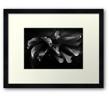 from out of the darkness we shall emerge Framed Print