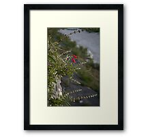 Cliffedge Flowers Framed Print