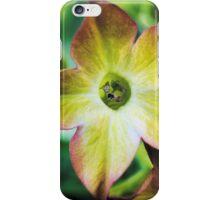 Nicotiana Orange Bicolour iPhone Case/Skin