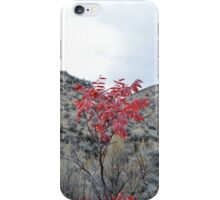 Alive in the Valley iPhone Case/Skin