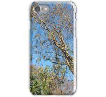 Scenic Trees iPhone Case/Skin