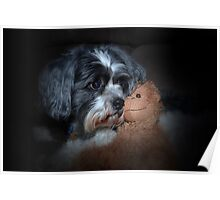 Puppy and Teddy Poster