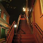 Stairway in the Dark by Ray4cam