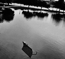 lagoon flooded bw by foryoutoknowtice