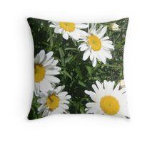 daisies ! Throw Pillow