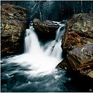 Portrait of a Cascade, Mill Falls, Stinson Brook, Rumney, NH by Wayne King