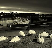 Daybreak by Wayne Holman
