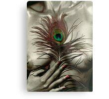 Feather 01 Metal Print