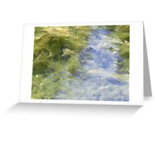 Is this a lovely reflection of trees in a mountain river?  Or is it . . . Greeting Card