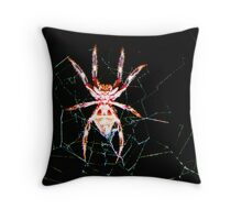 that would be Mr Wincy to you...so what kind of spider is mr Wincy? Throw Pillow