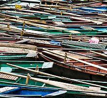 Long Boats (Boi River, Hoa lu, Viet Nam) by Matthew Stewart