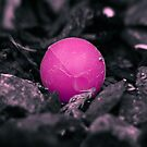 Lost BB pink version by SNAPPYDAVE