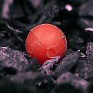 Lost BB red version by SNAPPYDAVE