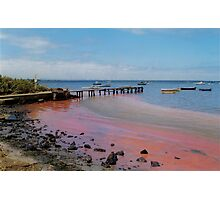 the day the red algae came to the bay Photographic Print