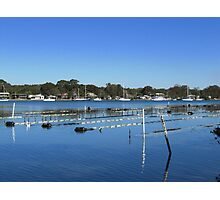 Oyster Racks! Camden Haven Inlet, Greater Port Macquarie.  Photographic Print