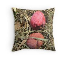 this year's persimmons Throw Pillow